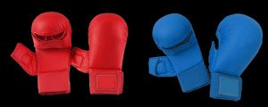 Karate Sparring Mitts
